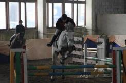 Negalėčiau gyventi be savo žirgų...